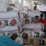 Transaksi Rumput Laut Kering Mencapai Rp 20 Miliar/Bulan