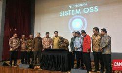 Meski Telah Meluncur, Belum Seluruh Daerah Siap Terapkan OSS