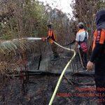 Kebakaran Hutan dan Lahan di Pasir Belengkong