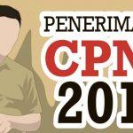 Inilah Ketentuan Rekrutmen CPNS 2018 dari Jalur Fomasi Khusus