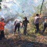 Deteksi 2.510 Titik Panas di Asean, BMKG: Sebaran Asap Tidak Ada ke Malaysia