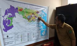 PT Sebuku Inti Plantation Menangkan Gugatan Tukar Menukar Kawasan