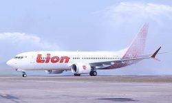 Mengapa Lion Air, Wings Air dan Citilink Berlakukan Tarif Bagasi?