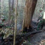 Prajurit Pamtas RI-Malaysia dan Warga Berjibaku Padamkan Karhutla, 3 Hektare Hangus