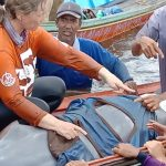 Diselamatkan, Pesut Mahakam yang Terjebak di Danau Melintang