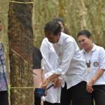 Jokowi Perintahkan Menteri PUPR Beli Karet untuk 'Ngaspal' Jalan