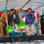 Rustam Ingin Kebutuhan Garam di Botang Dipenuhi Sendiri