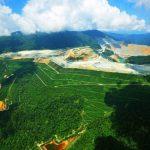 Tahun Ini, Pemerintah Akan Reklamasi Tambang 7.000 Hektar