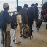 Gunakan Anjing Pelacak, KPPBC Nunukan Pastikan Barang Penumpang Aman dari Najis