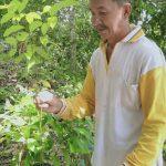 Raih Penghargaan Kalpataru 2019, Gubernur Sampaikan Ucapan Selamat ke Pak Nurbit