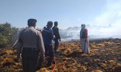 Pabrik Olahan Sabut Kelapa di Penajam Terbakar 9 Jam, Kerugian Rp 3 Miliar