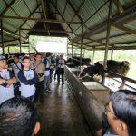 Kelola Lahan Pascatambang, KPC Berdayakan SDM Lokal