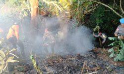 Lahan Seluas 1 Hektare Sengaja Dibakar Pemiliknya