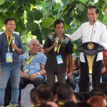 Serahkan SK TORA 133 Ribu Ha di Kalbar, Presiden Jokowi: Ditanami Agar Produktif