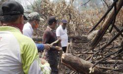 Wabup Agus Tantomo Targetkan Tidak Ada Lagi Karhutla di Berau
