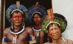 Amazon: Suku-suku Asli Brasil Hentikan Perang Demi Kelestarian Lingkungan