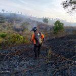 Petugas Gabungan Berjibaku Memadamkan Api di Lahan 10 Hektar yang Terbakar