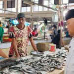 Wakil Bupati BerauKesal Perdagangan Ikan Hiu Viral di Medsos