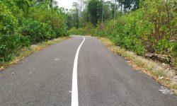 Jalan Menuju Wisata Goa Halo Tabung di Maratua Sudah Bagus