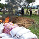 Pedagang Sayurandari Tarakan Gugat Balai Karantina Pertanian Nunukan