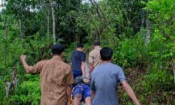 Dua Orang Meninggal Disambar Petir di Sepaku, Calon Ibu Kota Negara