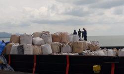 Perusahaan Perkebunan di Nunukan Ekspor 2.404 Ton Bungkil Sawit ke Vietnam