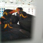 45 Burung Khas Kalimantan Gagal Diselundupkan ke Parepare