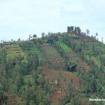Kementerian Keuangan Tetapkan 3 Syarat Penyaluran Dana Desa