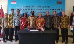Konsultasi Bilateral RI-Afrika Selatan Dorong Penguatan Kerja Sama Konkrit