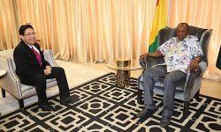 Presiden Guinea Ingin Realisasikan Kerja Sama Investasi dan Pembangunan