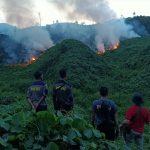 Lagi, 8 Hektare Lahan dan Kebun Hangus Terbakar