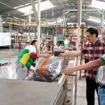 Hebat! Bahan Baku Ban Michelin Diproduksi di Samarinda