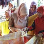 Dekranasda Kaltim Kunjungi Kampung Tenun Sukan Berau