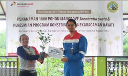 Pertamina Gas Tanam 1.000 Pohon Mangrove di Bontang Mangrove Park