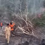 Pemkab Nunukan Himbau Warga Tidak Bakar Hutan dan Lahan