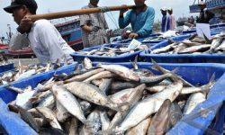 Tingkatkan Keselamatan, BMKG Dorong Nelayan Manfaatkan Aplikasi InfoBMKG