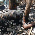 Dikepung Api Karhutla, Petani di Sebatik Meninggal di Kebunnya Sendiri