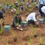 Presiden Jokowi Tinjau Lokasi Rehabilitasi Pascalongsor di Bogor