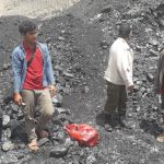 Pemodal Tambang Batubara Liar di Hutan Kaltim Ditangkap