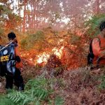 Lagi, Karhutla di Nunukan Hanguskan 82 Hektar Lahan Masyarakat