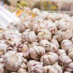 Pembebasan Impor Bawang Putih dan Bawang Bombai Langgar UU Hortikultura