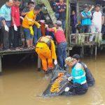 Wanita Diduga Frustasi Itu Ditemukan Tewas di Sungai Mahakam
