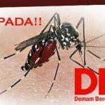 Waspadai Wabah DBD di Tengah Pandemi Covid-19