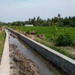 Pemerintah Alokasikan Rp2,250 Triliun untuk Peningkatan Irigasi Kecil di Perdesaan