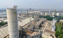 Kuartal I-2020 Produksi PT Pupuk Indonesia 3,1 Juta Ton