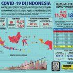 UPDATE COVID-19 di Indonesia, Sebanyak 18 Provinsi Tak Laporkan Kasus Baru