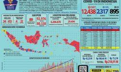 Info Grafis COVID-19 Nasional