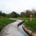 Dukung Produktivitas Perdesaan, Pemerintah Percepat Program Padat Karya di 900 Kecamatan