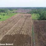 Pemerintah Optimalisasi Produksi 165.000 Hektar Lahan Pangan di Kalteng Tahun 2020-2024
