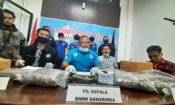 Bisnis Ganja Kering, Mahasiswa Samarinda Dibekuk BNN